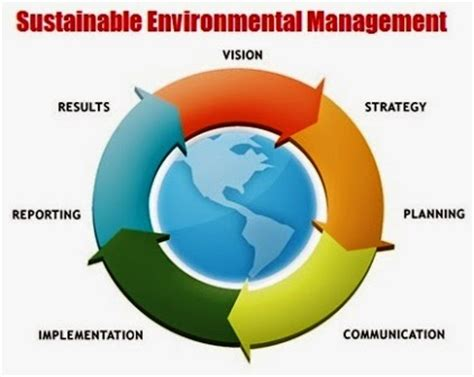 Surrounding environment essay